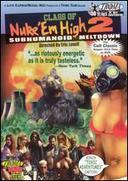 Class of Nuke 'Em High 2: Subhumanoid Meltdown