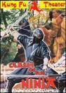 Clash of the Ninja