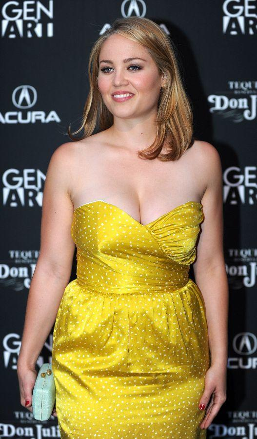 Erika Christensen at the California premiere of