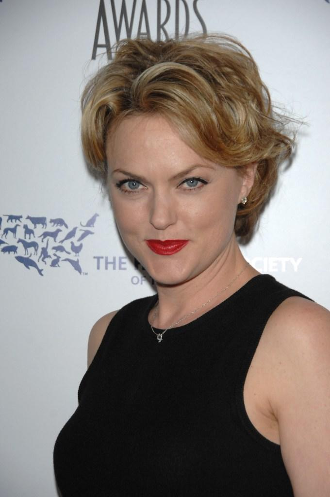 Elaine Hendrix nudes (43 pictures) Sideboobs, YouTube, lingerie