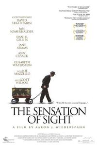The Sensation of Sight poster