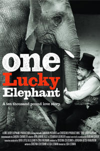 One Lucky Elephant poster