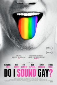 Do I Sound Gay? poster