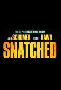 Snatched (2017) poster