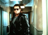 The Terminator Arnold Schwarzenegger