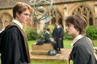 Cedric Diggory and Harry