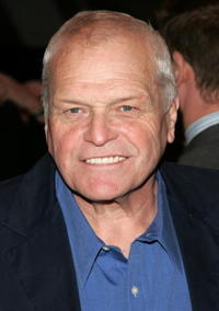 brian dennehy tv shows