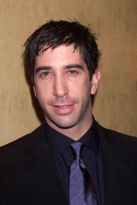 David Schwimmer at the premiere of