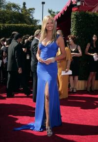 Nancy O'Dell at the 59th Annual Primetime Emmy Awards.