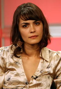 Shannyn Sossamon at the 2007 Summer TCA Tour.