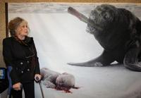 Brigitte Bardot at a campaign against Seal-Hunting.