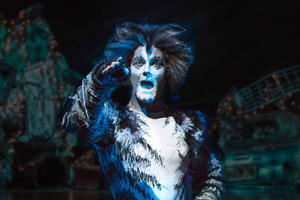 The 'Cats' Musical Is Coming to the Big Screen