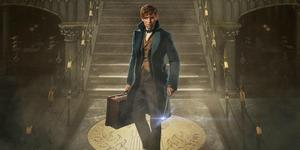 A 'Fantastic Beasts' Sequel Written By J.K Rowling Will Hit Theaters in 2018