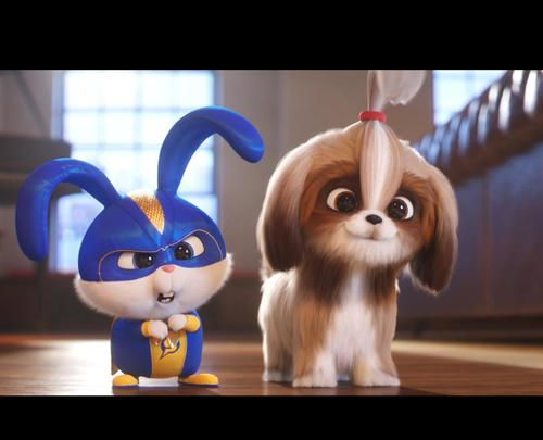 The Secret Life Of Pets 2 Times Movie Tickets Showtimes