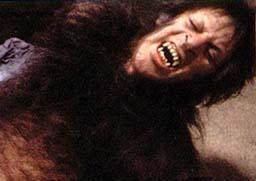 American Werewolf Main