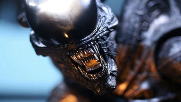 Xenomorph from Aliens