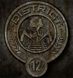 District 12 Poster