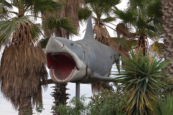Jaws shark in LA junkyard
