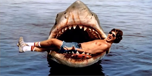 Remembering Jaws Week Our Obsessive Look Back At Steven