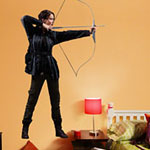 Hunger Games Wall Graphic