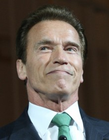 Schwarzenegger%20(220%20x%20283) Arnold Schwarzeneggers Biggest Regret is Turning Down Michael Bays The Rock