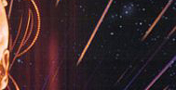 Poster-Crop Quiz: Can You Guess These Movie Posters That Have 'Star' in the Title?...