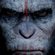 Movie News: Angry 'Apes' Poster; Bullock and Clooney Reteaming; Nicolas Cage Seeks Revenge in 'Tokarev' Trailer