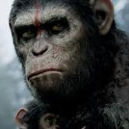 New Movie Posters: 'Dawn of the Planet of the Apes,' 'The Expendables 3' and More