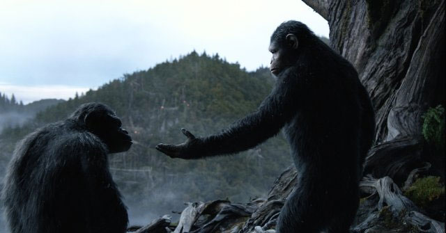dawn planet apes trust Why Dawn of the Planet of the Apes Is the Best Sequel Since The Dark Knight