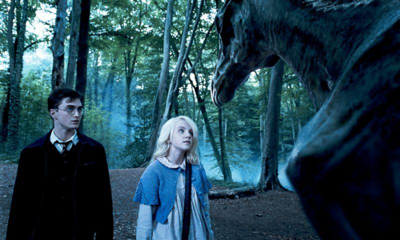 Harry Potter Thestral