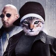 New Movie Posters: 'Keanu,' 'The Girl on the Train,' 'De Palma,' and More
