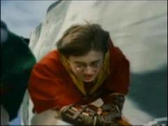 Harry Potter And The Sorcerer's Stone: Quidditch