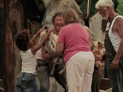 Beasts Of The Southern Wild: Wasn't No Time For Cryin'