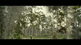 12 Years A Slave: Director's Vision (Featurette)