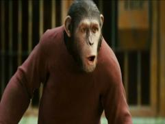 Rise Of The Planet Of The Apes: We'll Integrate Him