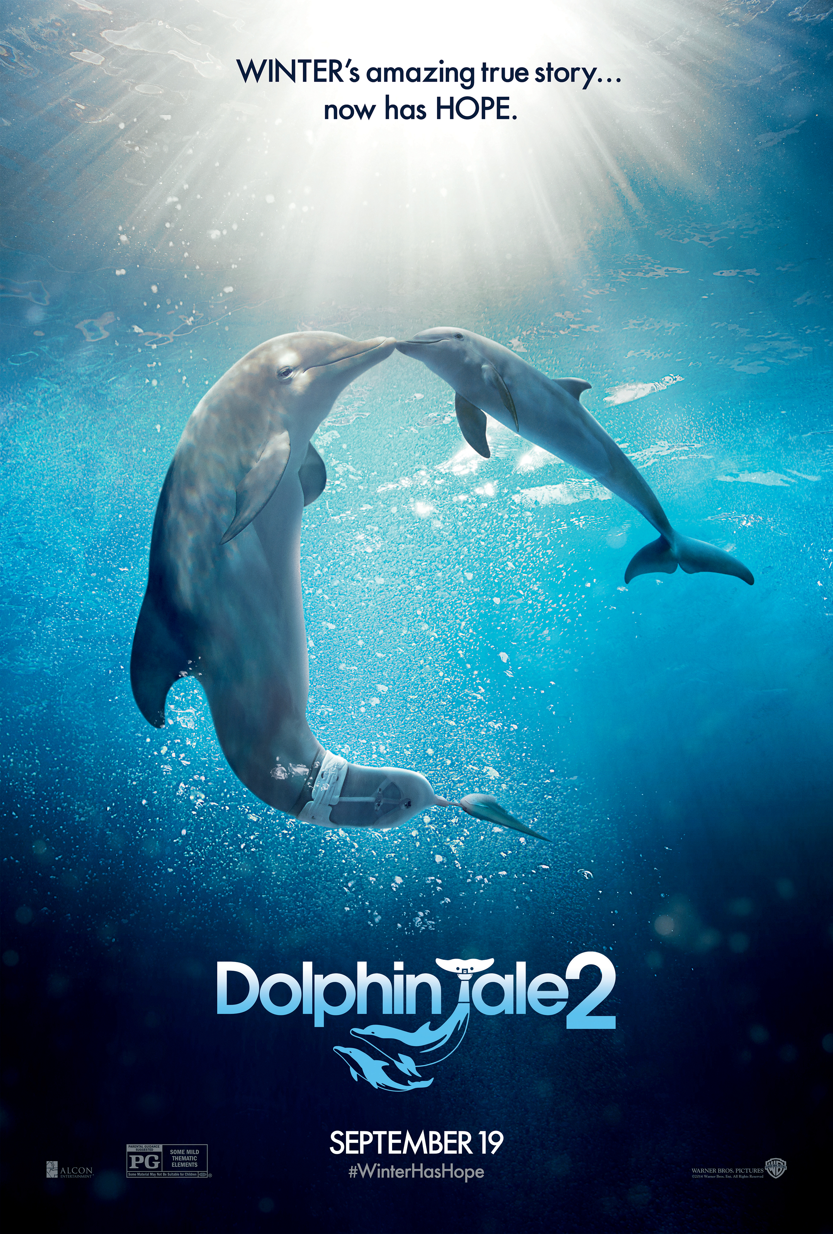 Dolphin's Tale Dolphin Tale 2 will tell