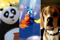 Kung Fu Panda / Finding Nemo / Cats & Dogs