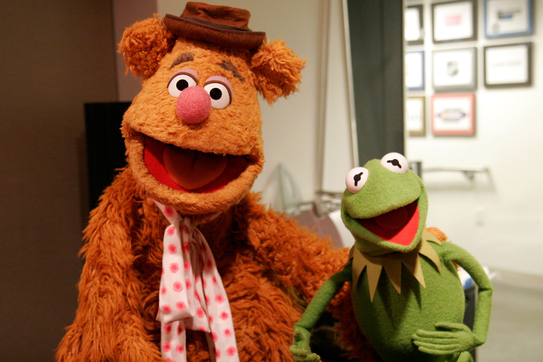 15 Things You Didn't Know About the Muppets | Fandango