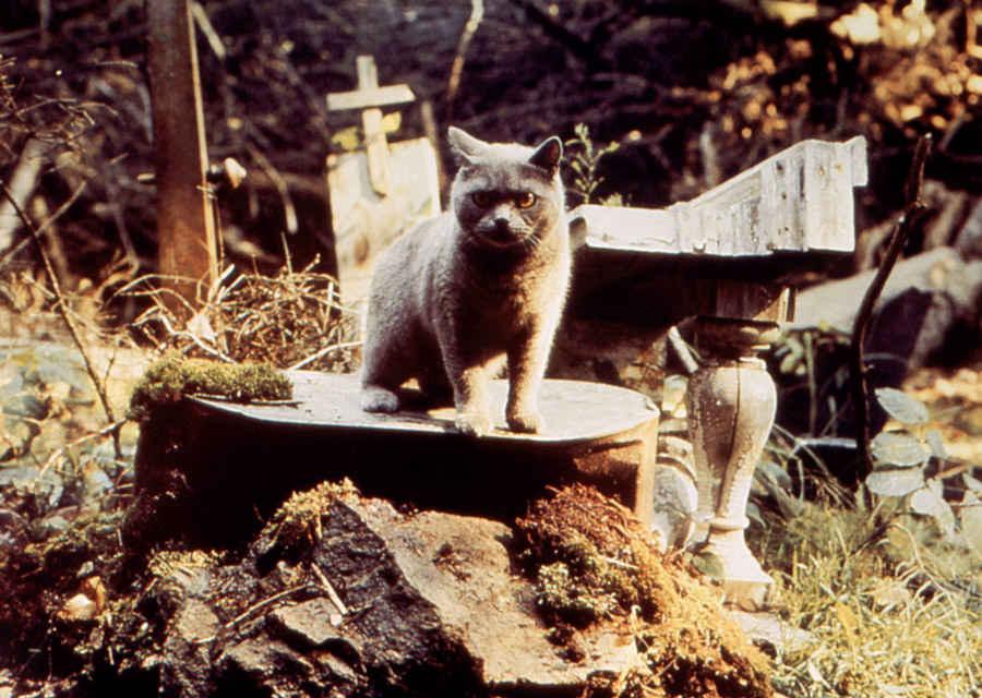'Pet Sematary' Remake Digs 'Starry Eyes' Directors; Here's Everything We Know