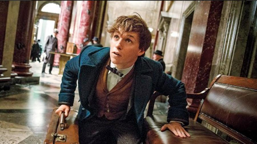 Fantastic Beasts' Will Be Five-Movie Series, Not a Trilogy | Fandango