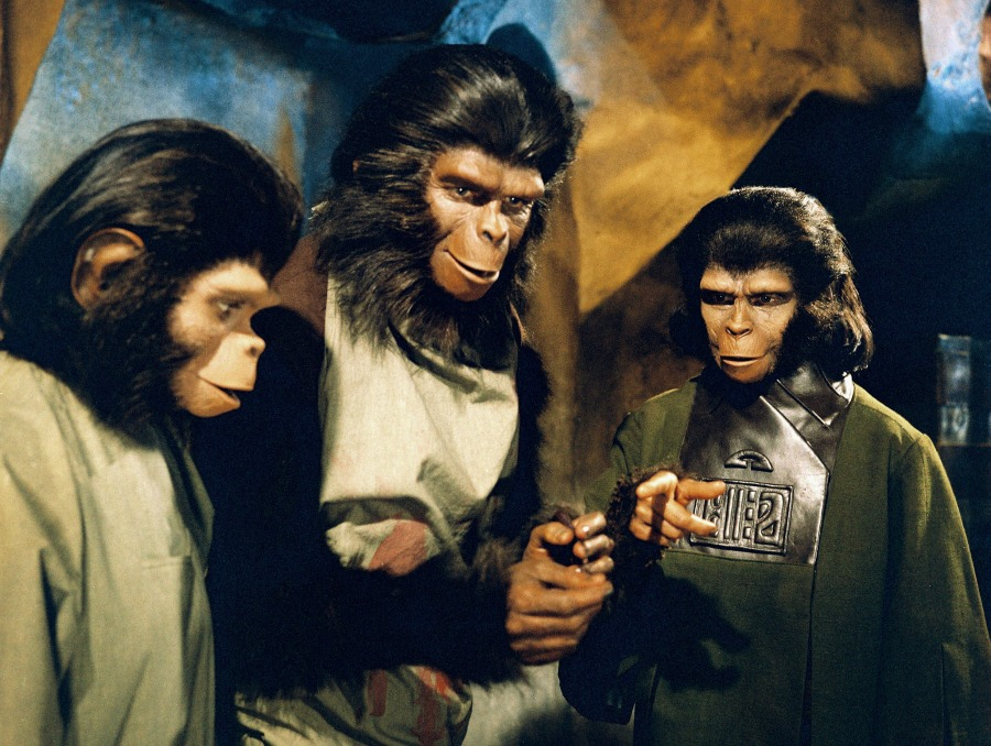 Which Monkey Movie is Right for Your Family?   Fandango