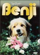 Benji showtimes and tickets