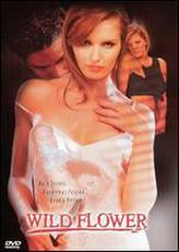 Wildflower (2000) showtimes and tickets