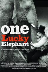 One Lucky Elephant showtimes and tickets