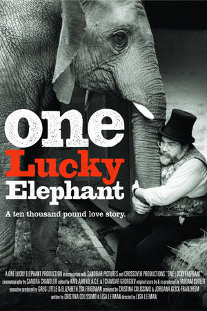 """Poster art for """"One Lucky Elephant."""""""