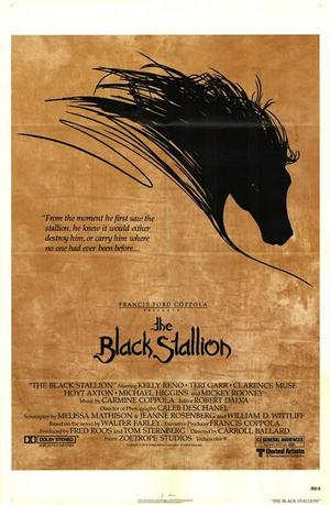"Poster art for ""The Black Stallion."""
