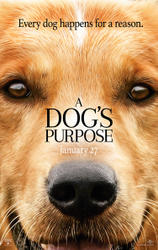 A Dog S Purpose Amc Movie Show Times