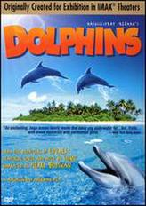 Dolphins showtimes and tickets