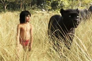 News Briefs: 'Jungle Book' Sequel on Its Way; Daisy Ridley Talks 'Star Wars' Rumors