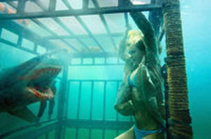 Trailer Watch: 'Shark Night 3D,' 'Salvation Blvd.' and SJP Returns in 'I Don't Know How She Does It'
